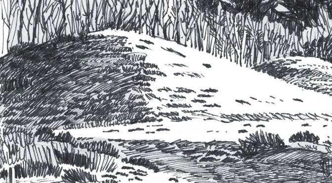 Naturtur på Gravhøjsporet