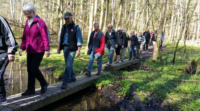 Pilgrimsvandring ved Slettestrand